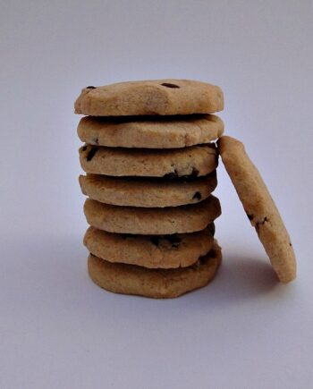 Biscuit Chocolate Chip Shortbread